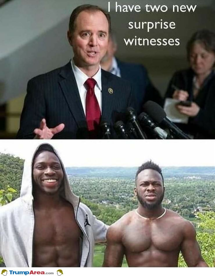 2 New Surprise Witnesses