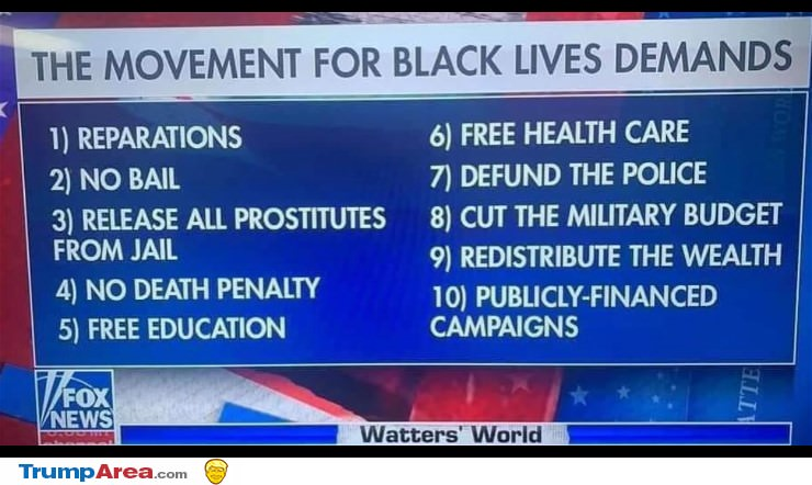 BLM is so stupid