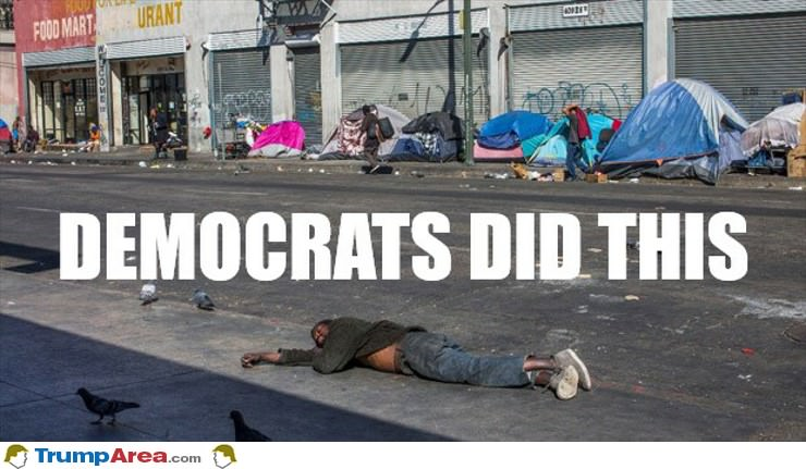 Democrats Did This