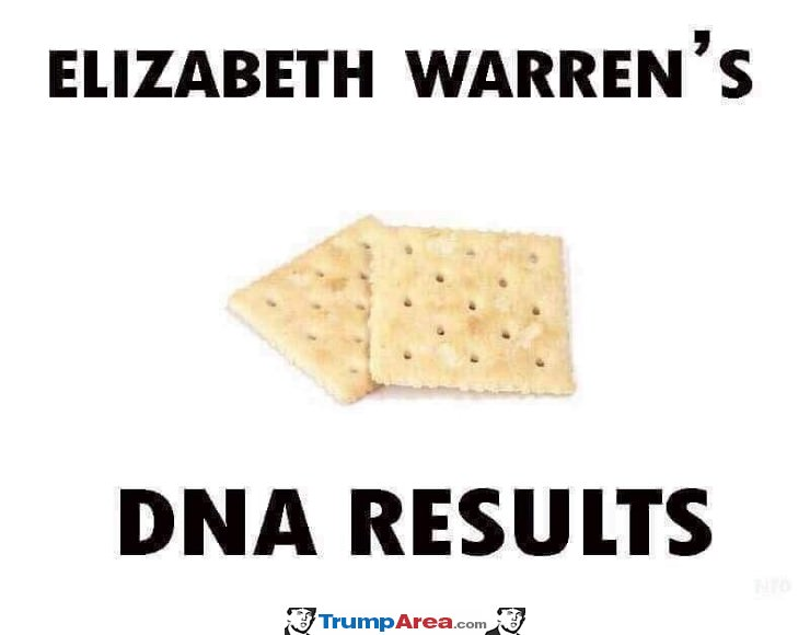 elizabeth warrens DNA