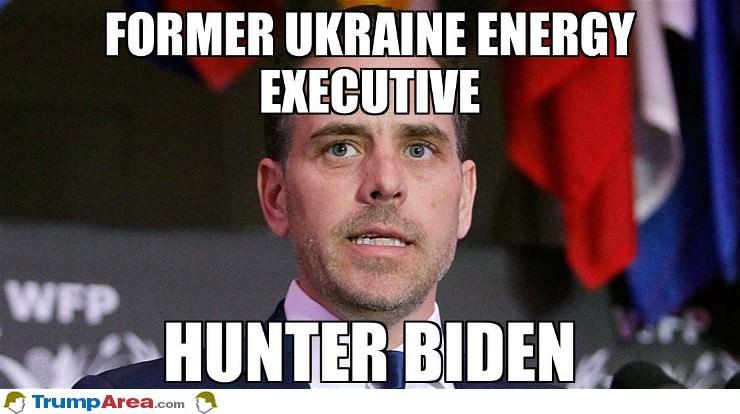 Energy Executive