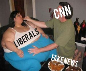 Fake News Hungry