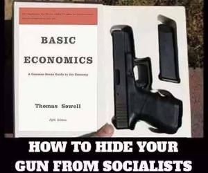 Hide Your Gun From Socialists