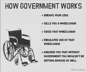 How Government Works