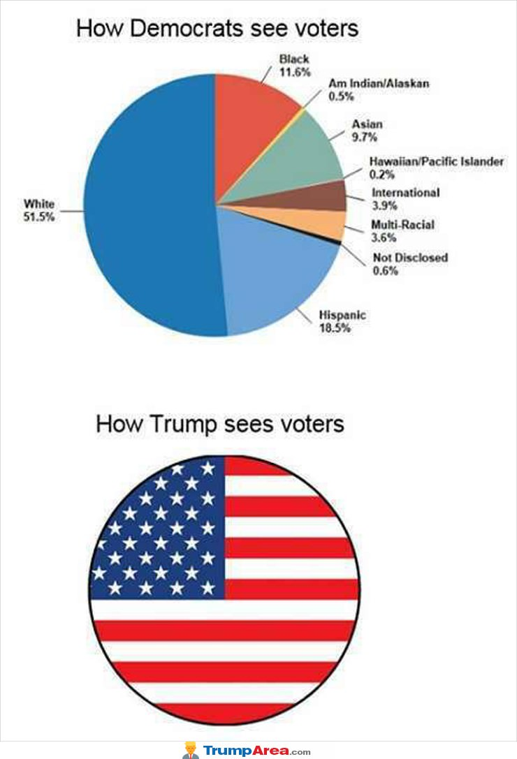 How They See Voters