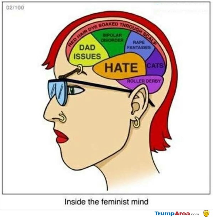 Inside The Feminist Mind