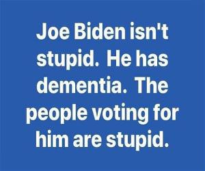 Joe Biden Is Not Stupid