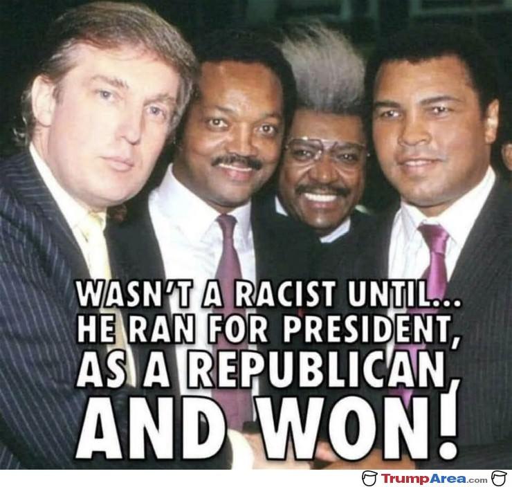 not-a-racist.jpg