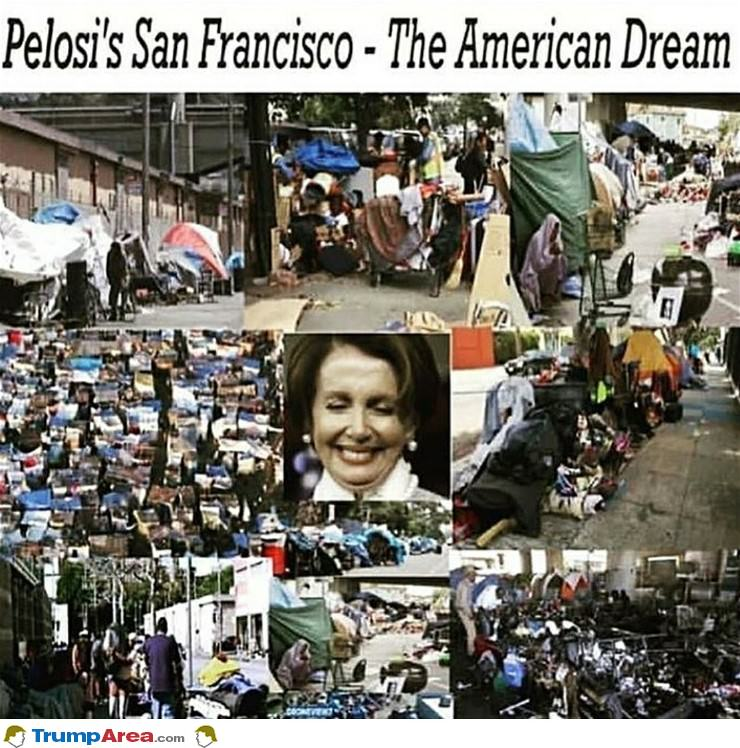 Pelosi District