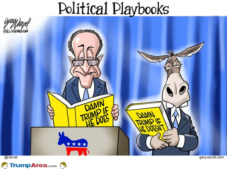 Political Playbook