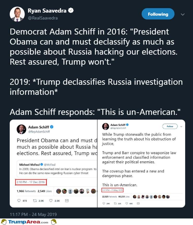 Schiff For Brains