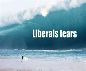 Some Liberal Tears