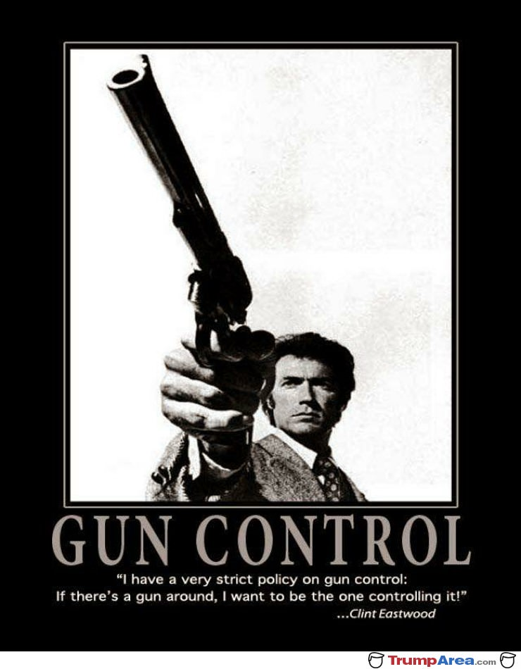 Strict Gun Control Policy