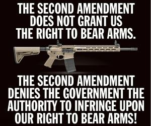 The 2Nd Ammendment