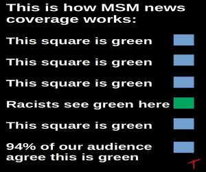 the MSM