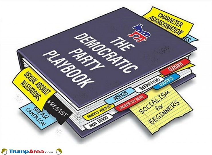The Democrat Playbook
